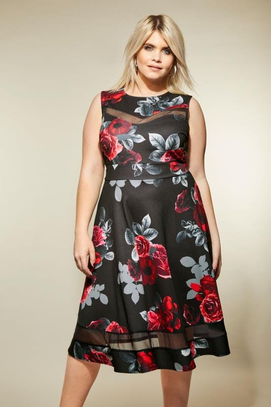Plus Size Midi Dresses Black & Red Floral Scuba Skater Dress