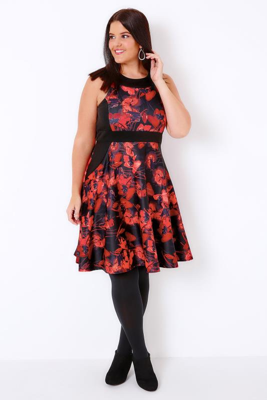 Black & Red Poppy Print Skater Dress