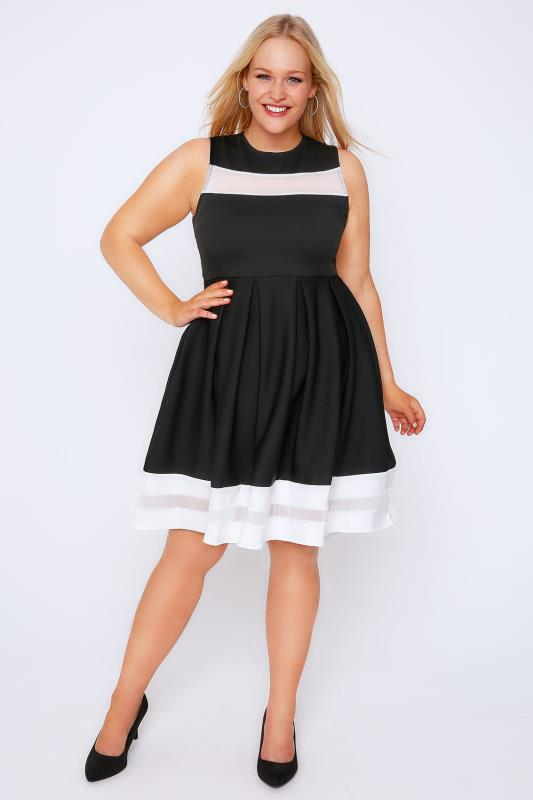 Black & White Mesh Stripe Skater Dress