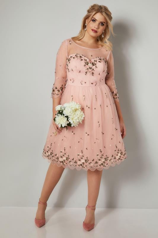 CHI CHI Blush Pink Floral Embroidered Mesh Harmonie Dress