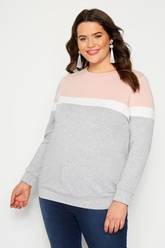 Plus Size Sweatshirts Grey Colour Block Sweatshirt