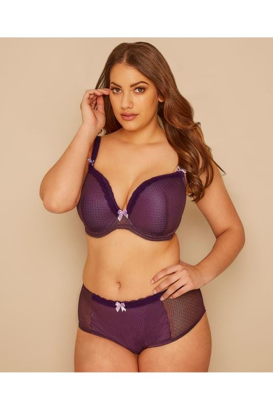 Plus Size Briefs Purple Berry Mesh Brief