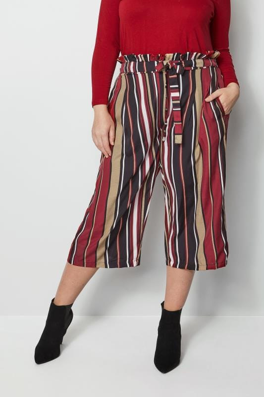 Plus Size Culottes Red & Multi Stripe Culottes