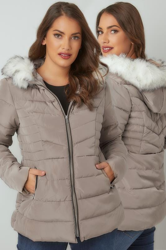 Puffer & Quilted Jackets Taupe Padded Puffer Coat With Hood & Faux Fur Trim 120024