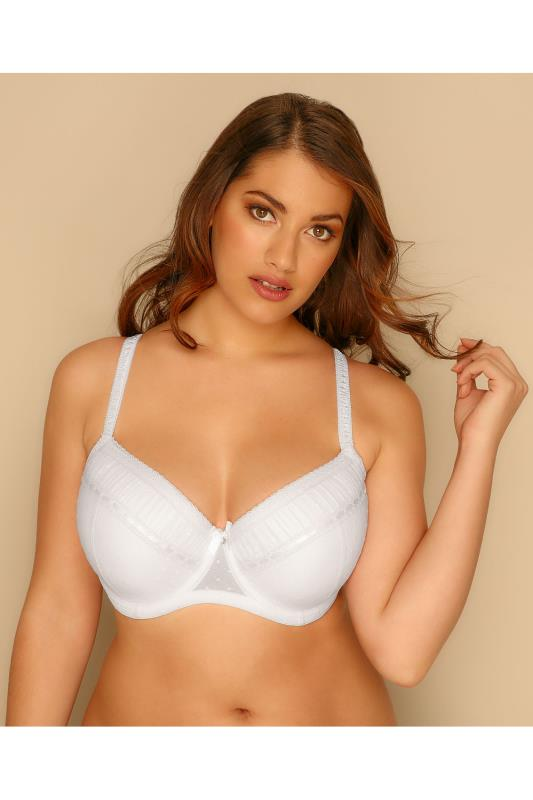 White Spotted Mesh Underwired Bra With Ribbon Detail