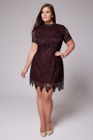 Party Dresses AX PARIS CURVE Purple Turtle Neck Lace Overlay Dress 103328