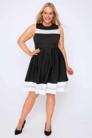 Black & White Mesh Stripe Skater Dress 102017