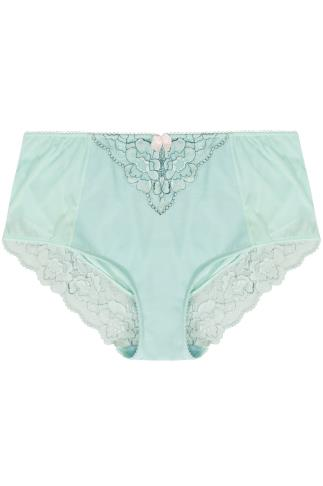 Mint Green & Blue Two Tone Mesh Brief With Floral Lace Detail