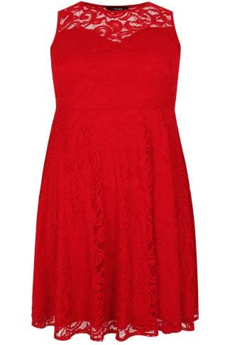 Red Floral Lace Skater Dress