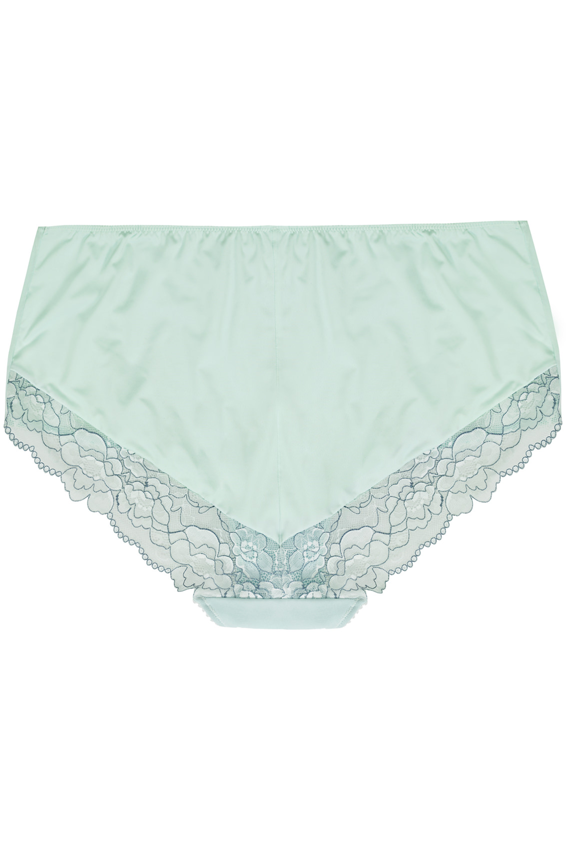 mint green blue two tone mesh brief with floral lace detail plus size 14 to 36. Black Bedroom Furniture Sets. Home Design Ideas